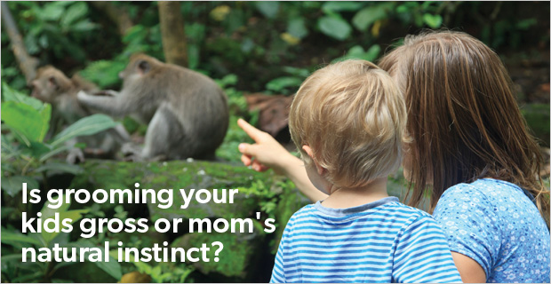 Is grooming your kids gross or mom's natural instinct?