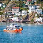 Travel Canada's capital cities: St. John's, N.L.